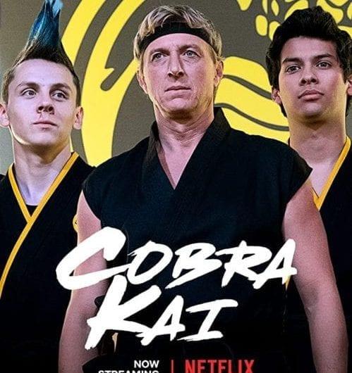 Cobra Kai TV Series Cast and season return date on Mother of Movies